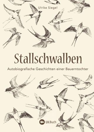 Ulrike Siegel: Stallschwalben