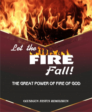 Olusegun Festus Remilekun: LET THE FIRE FALL
