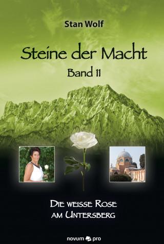 Stan Wolf: Steine der Macht – Band 11