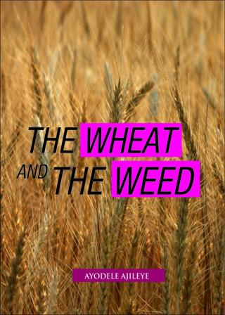 Ayodele Ajileye: The Wheat and the Weed