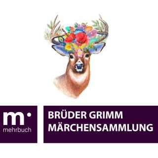 Brüder Grimm, Wilhelm Grimm, Jacob Grimm: Märchensammlung