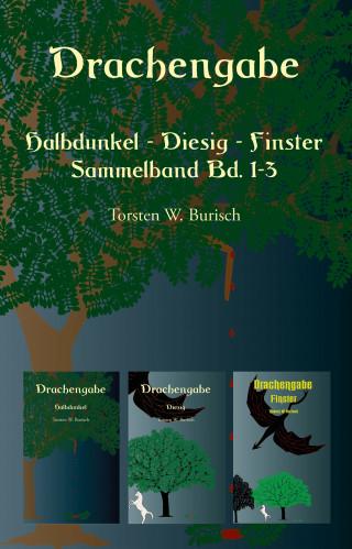 Torsten W. Burisch: Drachengabe - Halbdunkel - Diesig - Finster