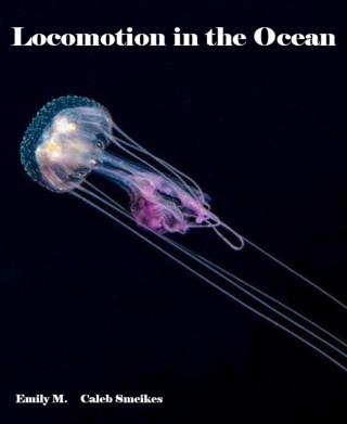Emily M., Caleb Smeikes: Locomotion in the Ocean