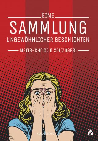 Marie-Christin Spitznagel: Eine Sammlung ungewöhnlicher Geschichten