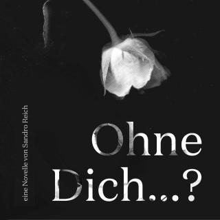 Sandro Reich: Ohne dich...?