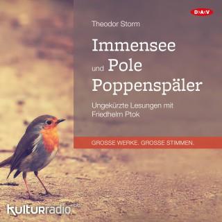 Theodor Storm: Immensee und Pole Poppenspäler