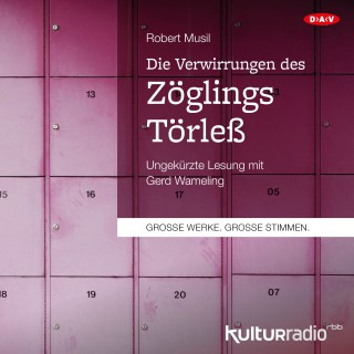 Robert Musil: Die Verwirrungen des Zöglings Törleß (Ungekürzte Lesung)