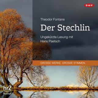 Theodor Fontane: Der Stechlin (Ungekürzte Lesung)