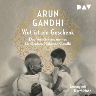 Arun Gandhi: Wut ist ein Geschenk (Gekürzt)