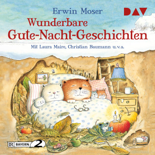 Erwin Moser: Wunderbare Gute-Nacht-Geschichten (Gekürzt)