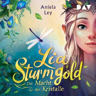 Aniela Ley: Die Macht der Kristalle - Lia Sturmgold, Teil 1 (Ungekürzt)