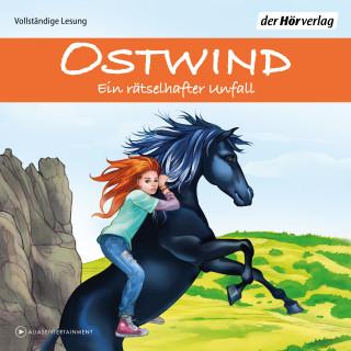 Rosa Schwarz: Ostwind - Ein rätselhafter Unfall