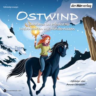 THiLO: Ostwind. Spukalarm im Pferdestall & Weihnachten mit Hindernissen
