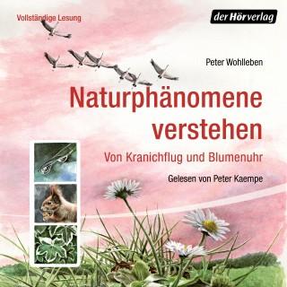 Peter Wohlleben: Naturphänomene verstehen