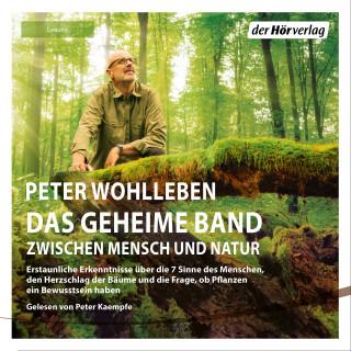 Peter Wohlleben: Das geheime Band