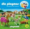 David Bredel, Florian Fickel: Die Playmos - Sabotage auf dem Reiterhof (Folge 49)