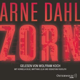 Arne Dahl: Zorn