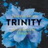 Audrey Carlan: Trinity - Bittersüße Träume