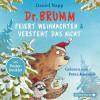 Daniel Napp: Dr. Brumm feiert Weihnachten / Dr. Brumm versteht das nicht