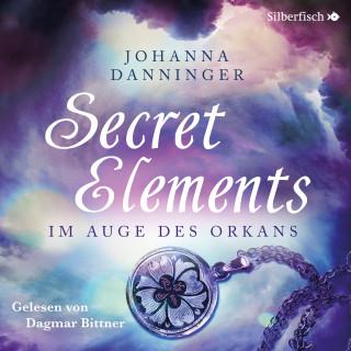 Johanna Danninger: Im Auge des Orkans