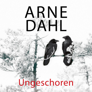 Arne Dahl: Ungeschoren (A-Team 6)