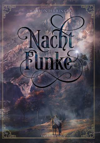 Marion Hübinger: Nachtfunke