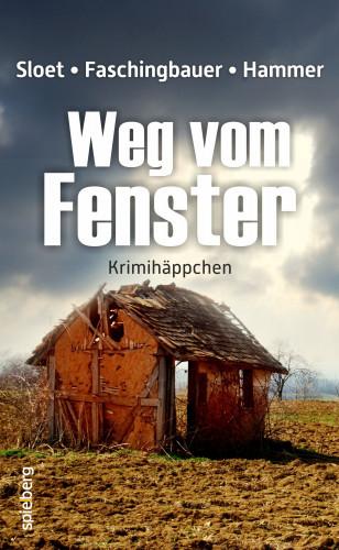 Rolf Peter Sloet, Manfred Faschingbauer, Wolfgang Hammer: Weg vom Fenster