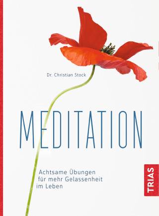 Christian Stock: Meditation