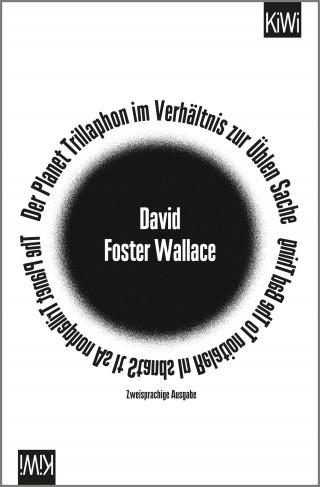 David Foster Wallace: Der Planet Trillaphon im Verhältnis zur Üblen Sache