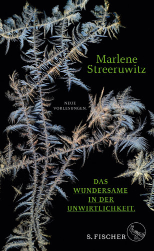 Marlene Streeruwitz: Das Wundersame in der Unwirtlichkeit.