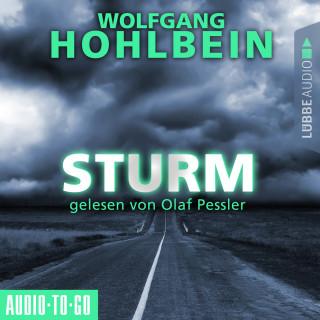 Wolfgang Hohlbein: Sturm (Gekürzt)