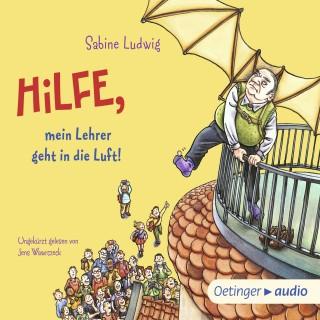 Sabine Ludwig: Hilfe, mein Lehrer geht in die Luft!