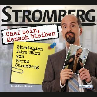 """Ralf Husmann: """"Chef sein, Mensch bleiben"""" Strategien fürs Büro von Bernd Stromberg"""
