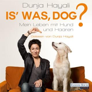 Dunja Hayali: Is' was, Dog?