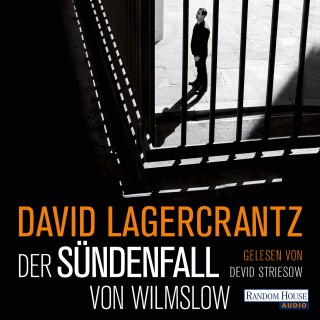 David Lagercrantz: Der Sündenfall von Wilmslow
