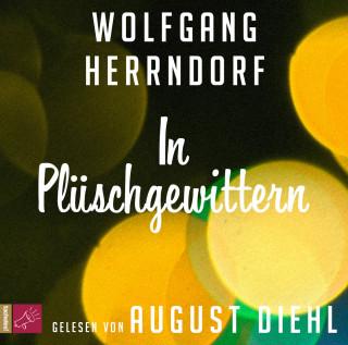 Wolfgang Herrndorf: In Plüschgewittern