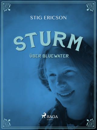 Stig Ericson: Sturm über Bluewater
