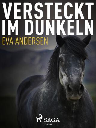 Eva Andersen: Versteckt im Dunkeln