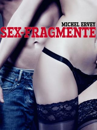 Michel Ervey: Sex-Fragmente
