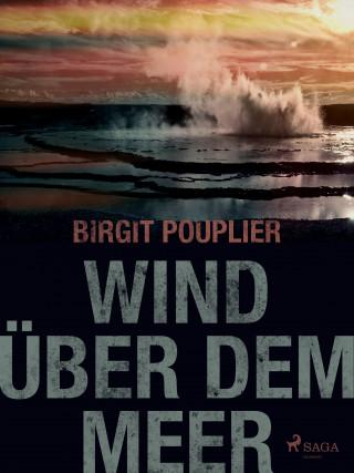Birgit Pouplier: Wind über dem Meer