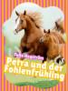 Tulla Hagström: Petra und der Fohlenfrühling