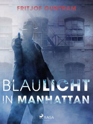 Fritjof Guntram: Blaulicht in Manhattan