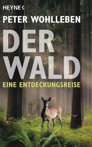 Peter Wohlleben: Der Wald