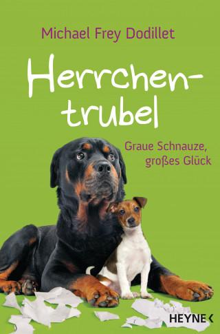 Michael Frey Dodillet: Herrchentrubel