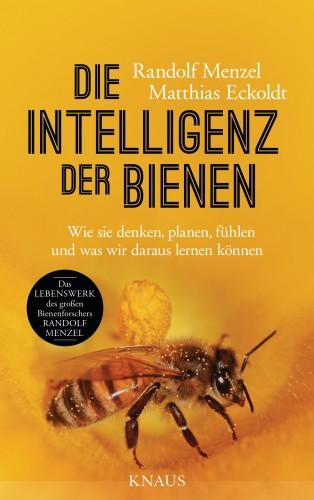 Randolf Menzel, Matthias Eckoldt: Die Intelligenz der Bienen