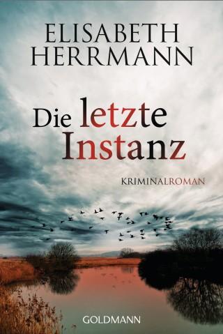 Elisabeth Herrmann: Die letzte Instanz