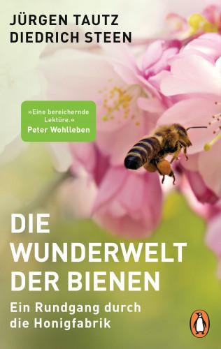 Jürgen Tautz, Diedrich Steen: Die Wunderwelt der Bienen
