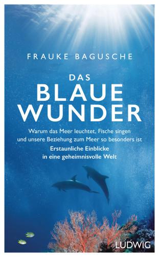 Frauke Bagusche: Das blaue Wunder