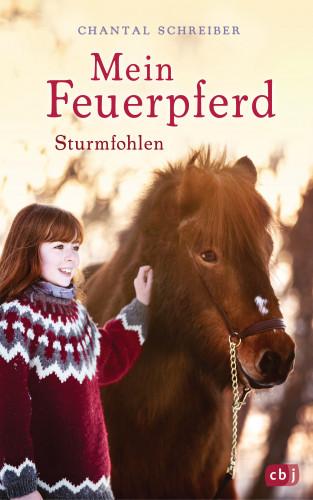 Chantal Schreiber: Mein Feuerpferd - Sturmfohlen