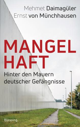 Mehmet Daimagüler, Ernst von Münchhausen: Mangelhaft
